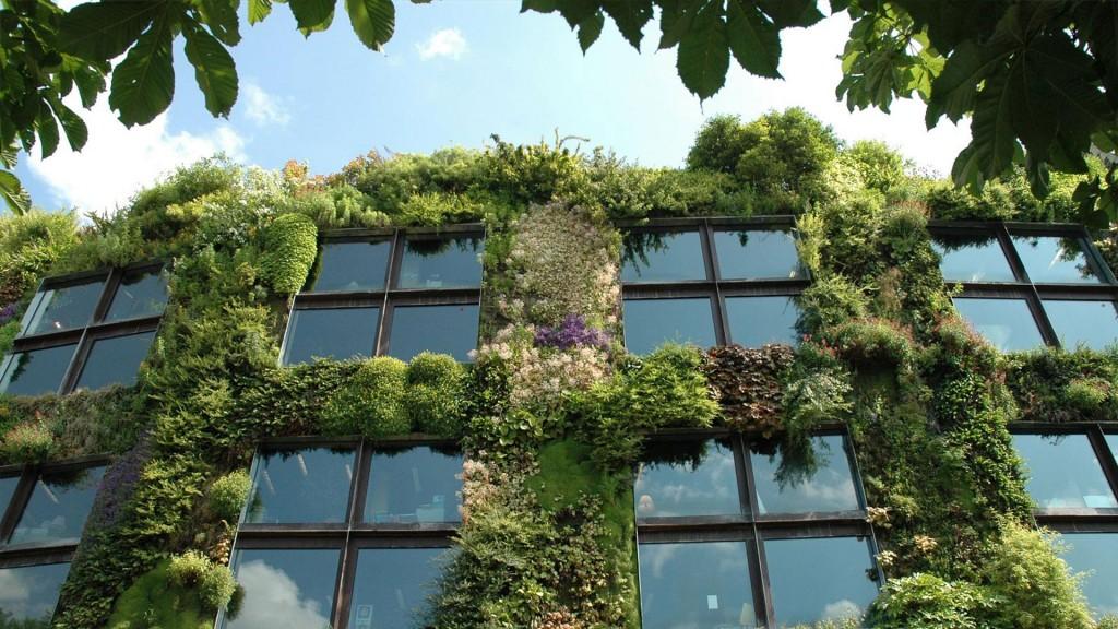 Jardines verticales y muros verdes acuarios naturales for Muros verdes naturales